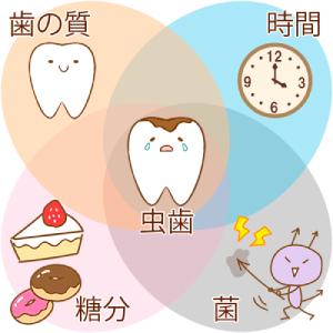 虫歯の原因